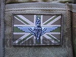 Flag Patch, Large, Velcro, MTP Green, Para Cap Badge