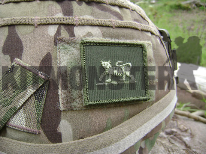 Badge, Helmet, PWRR Tiger, Subdued, Velcro